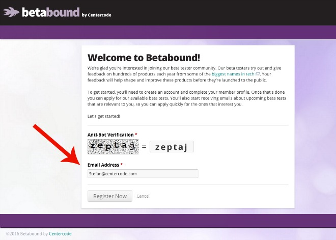 Screen Shot - Betabound Signup 2