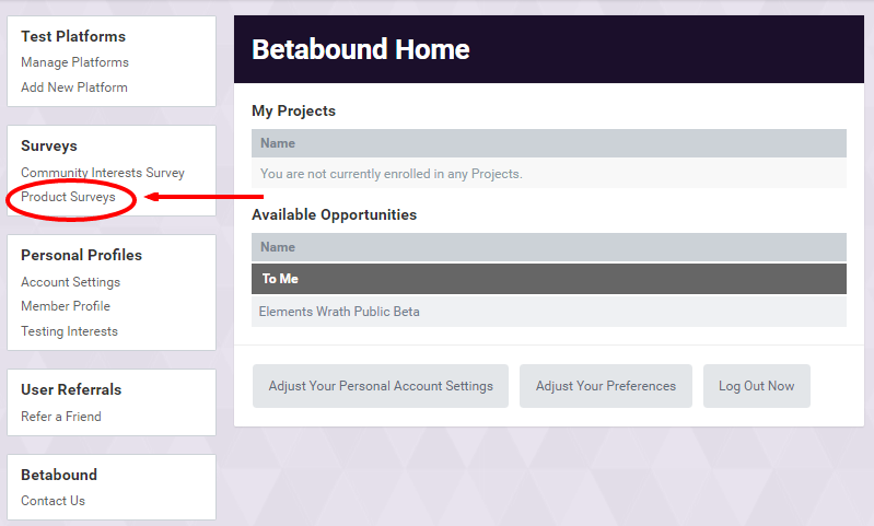 Betabound Platform Homepage Product Surveys Link
